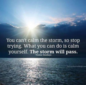 Calm yourself. The storm will pass.