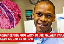 MIT Bio Engineering Prof Aims To Use Malaria Parasite To Deliver Life Saving Drugs!