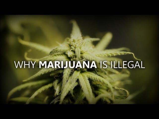 First Alcohol Prohibition, Now Marijuana Prohibition